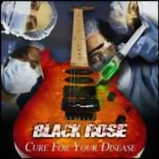 Black Rose ** Cure For Your Disease ** 10.08.2012